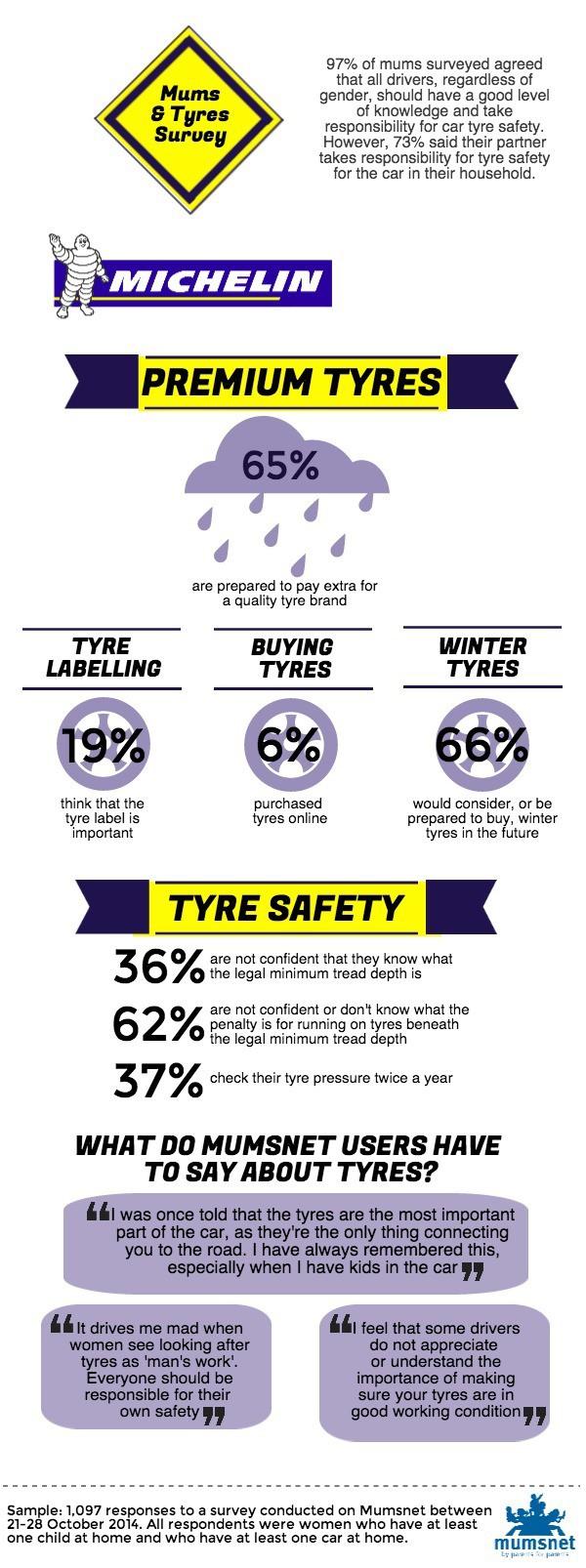 Michelin infographic 27.11.14 v1